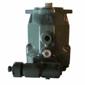 Spare Parts for Sauer PV20 PV21 PV22 PV23 Hydraulic Piston Pumps