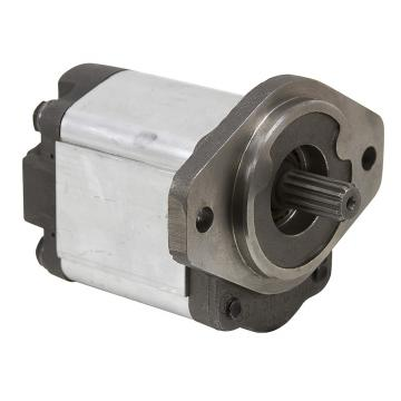 Replacement Hydraulic Piston Pump Complete Pump Vickers Pve19, Pve21